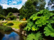 Postcard perfect in Bibury