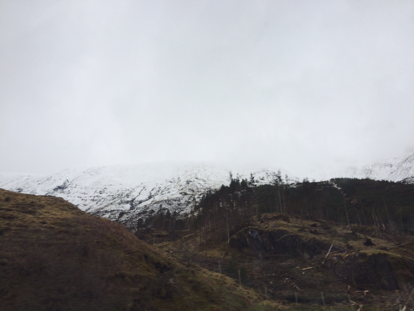 View from the bus - snow!