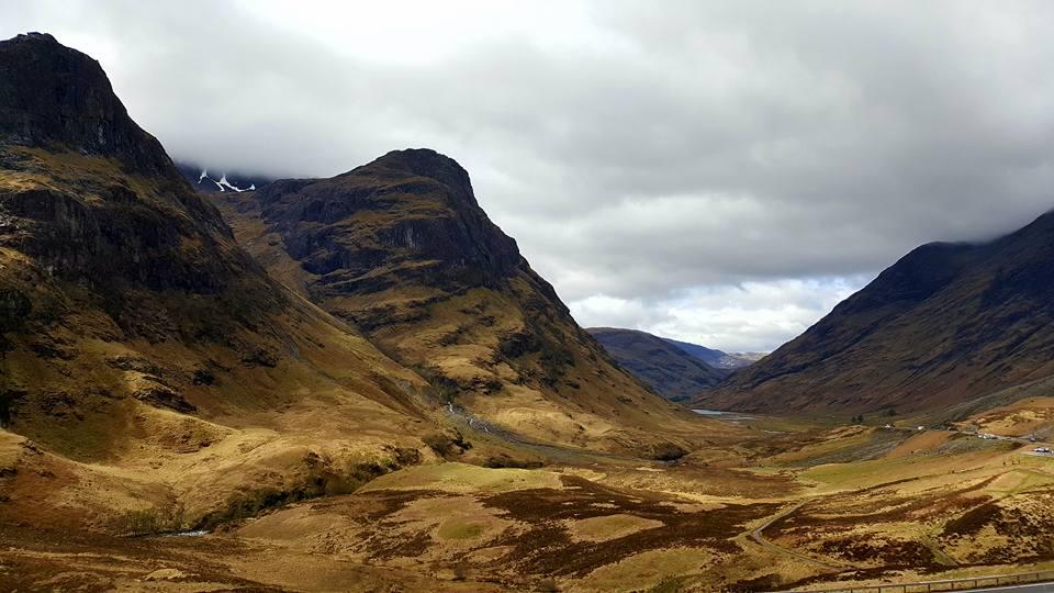 Highland of Scotland 3