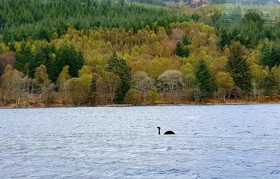 something in Loch Ness