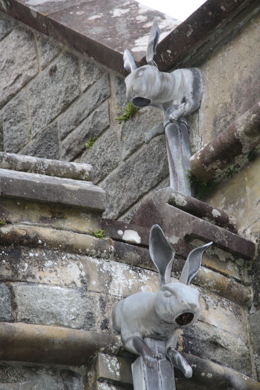 Rabbits at St. Conans Kirk
