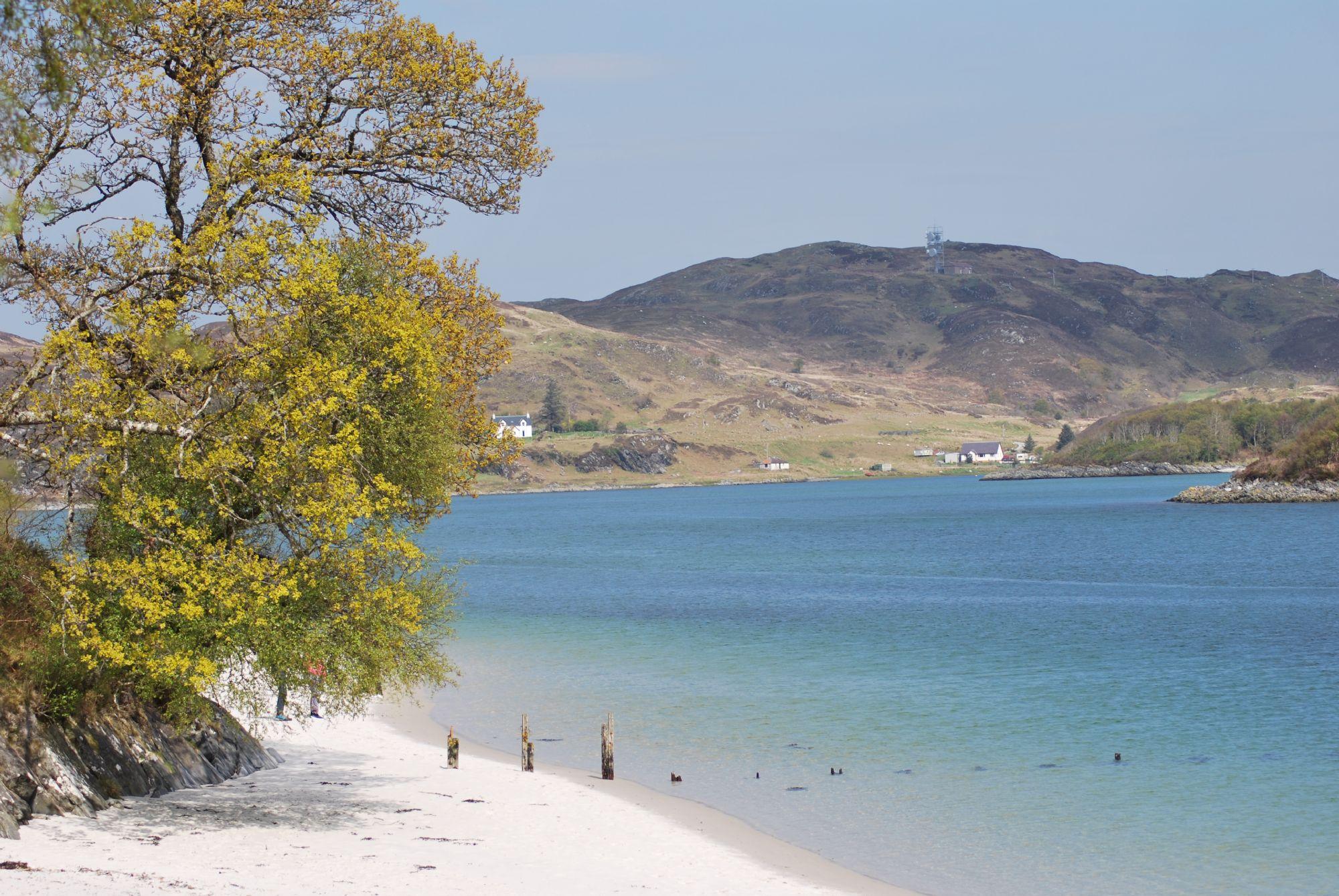 Scotland or the Caribbean?