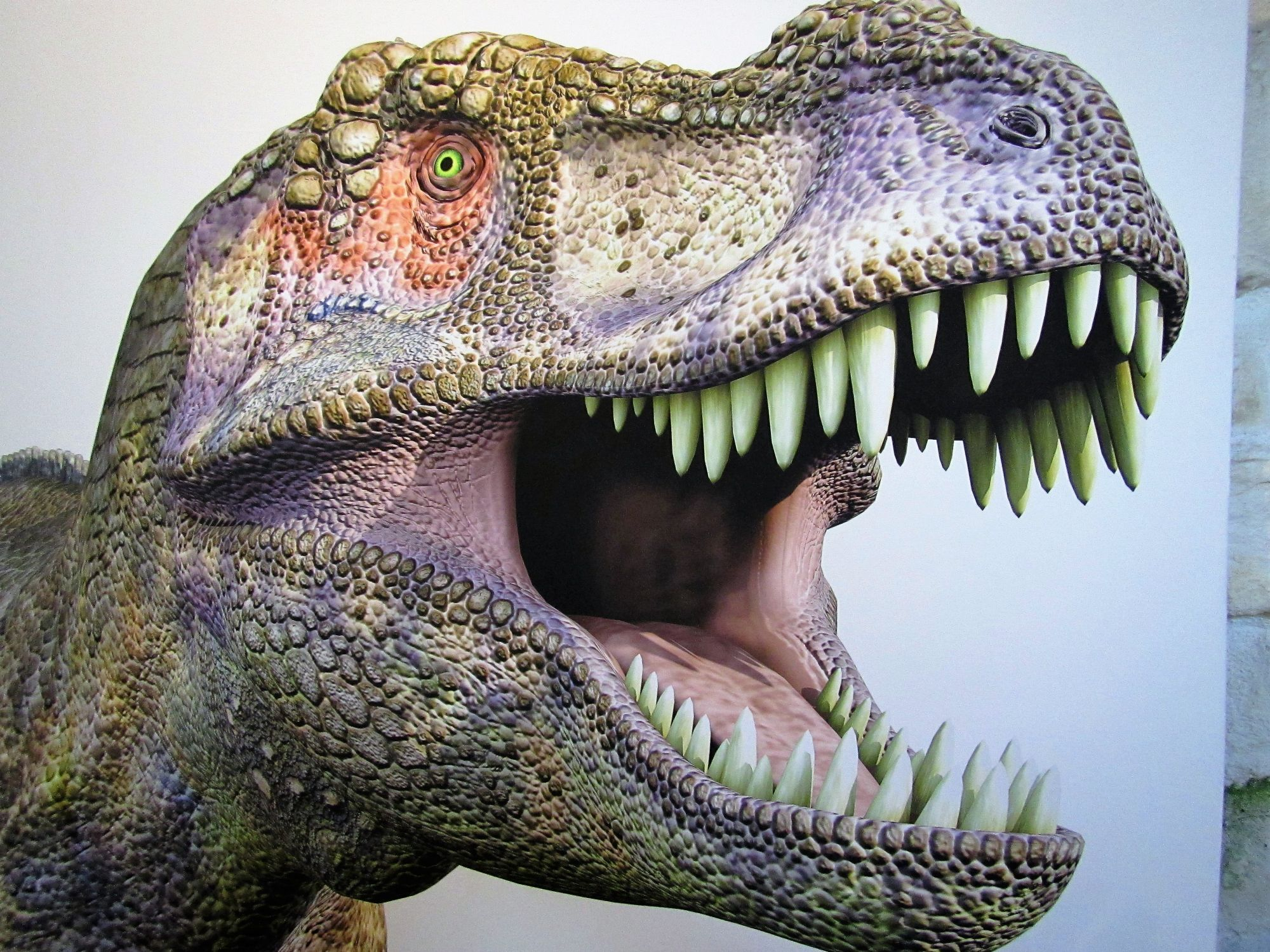 Dino Skye