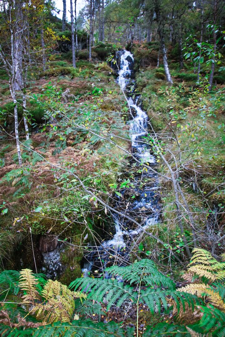 waterfall at Glen Affric