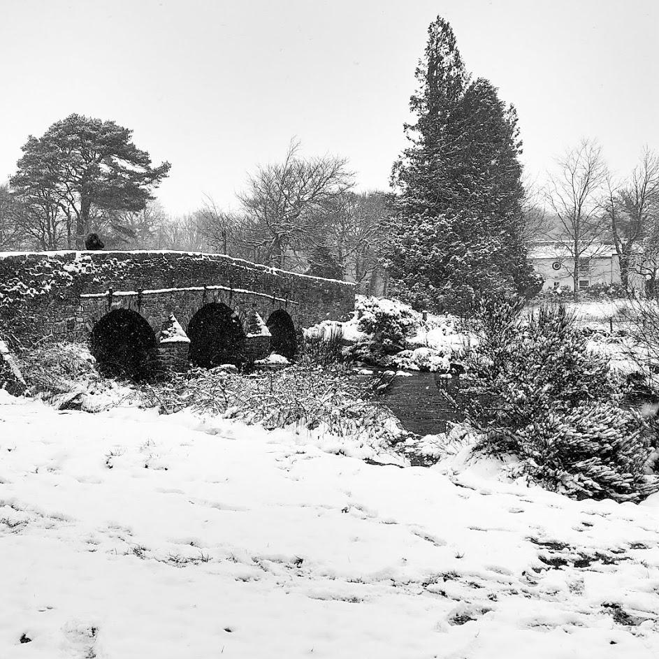 The beauty of Dartmoor