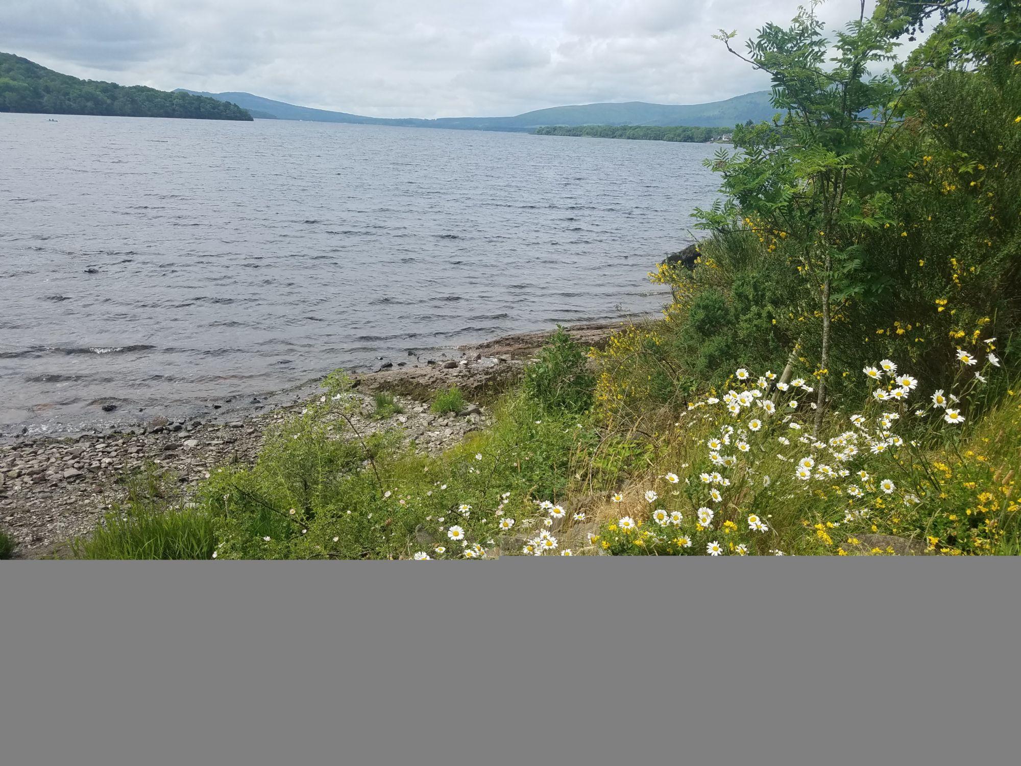 Loch Lomond Again
