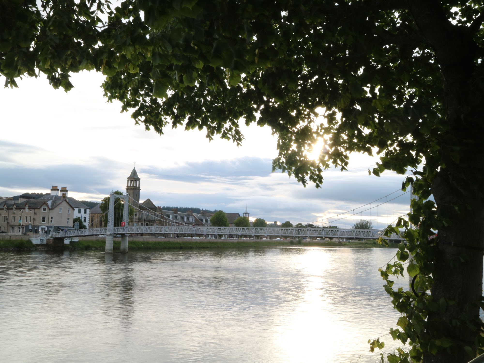 Inverness under a tree
