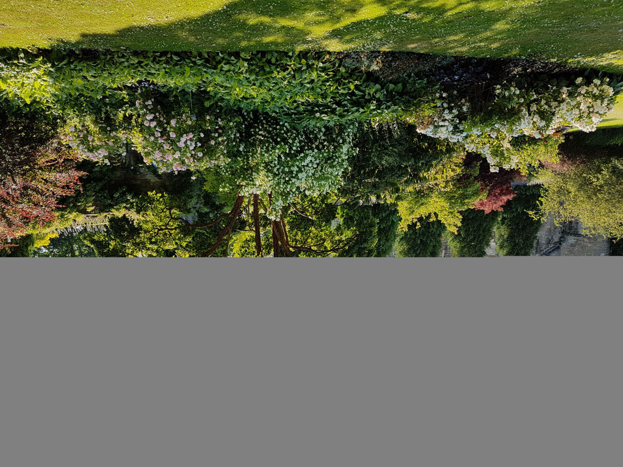 Falkland gardens