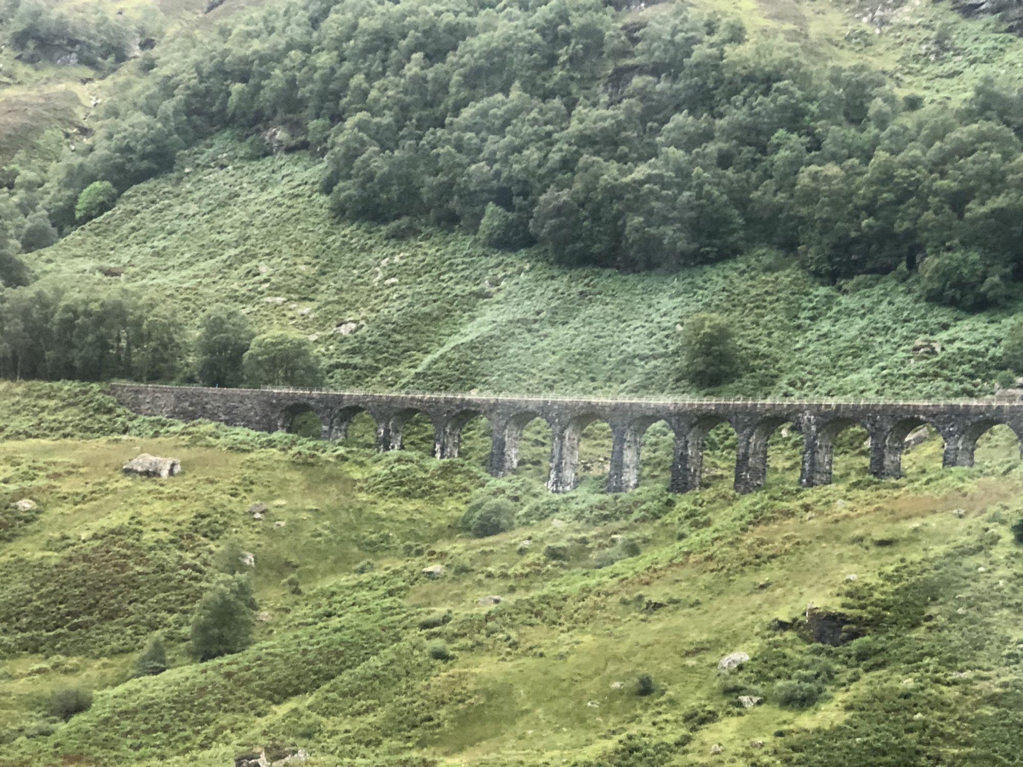 Harry Potter want to be bridge