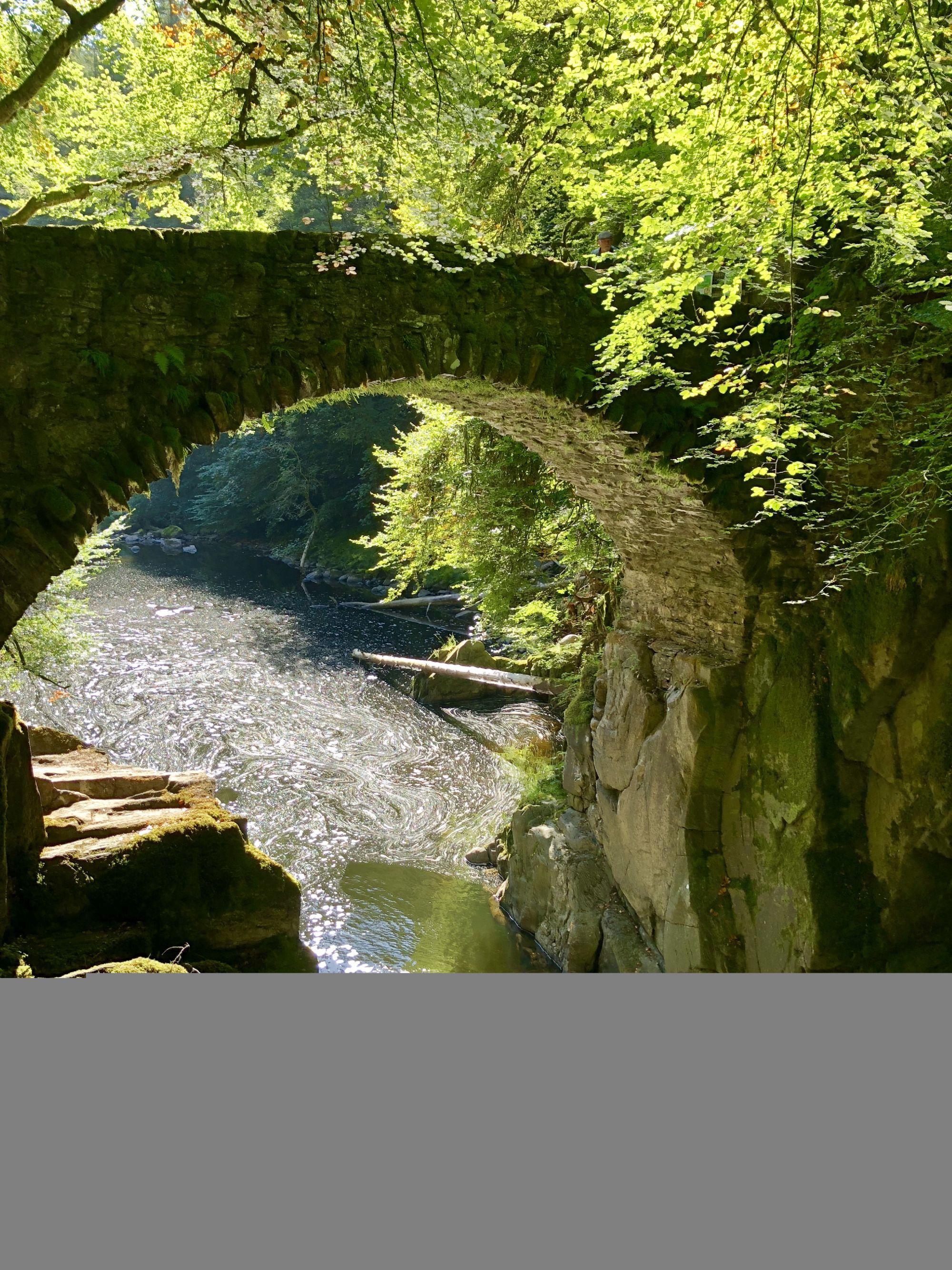 Waterfalls by Dunkeld