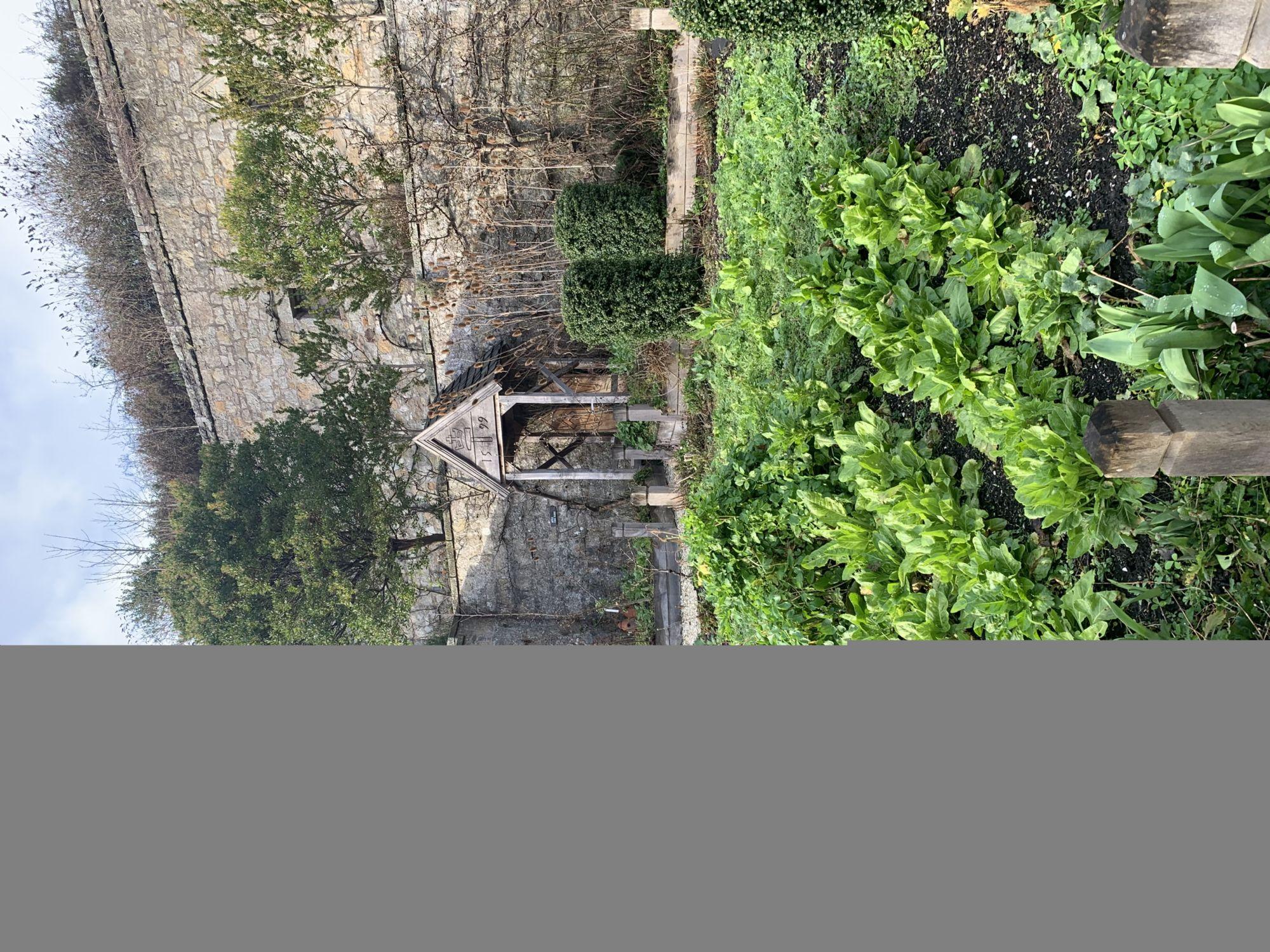 Palace garden of Culross