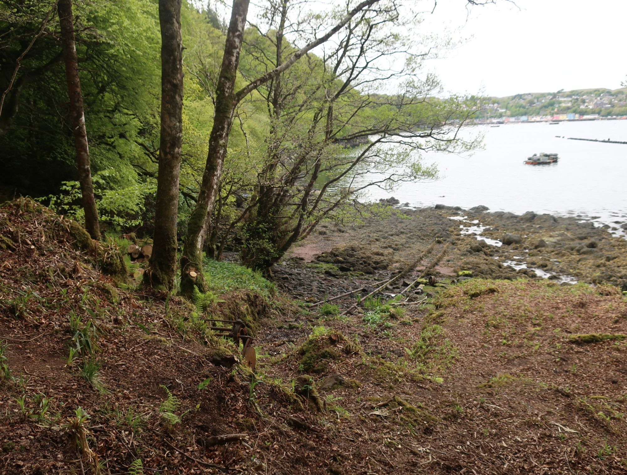 Tobermory hike