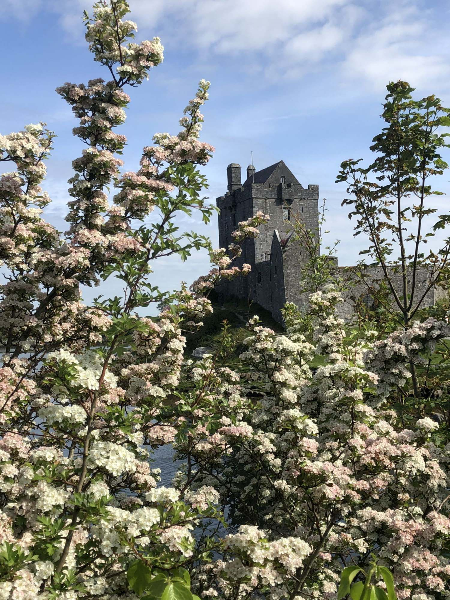 Dunguaire Castle is so lovely