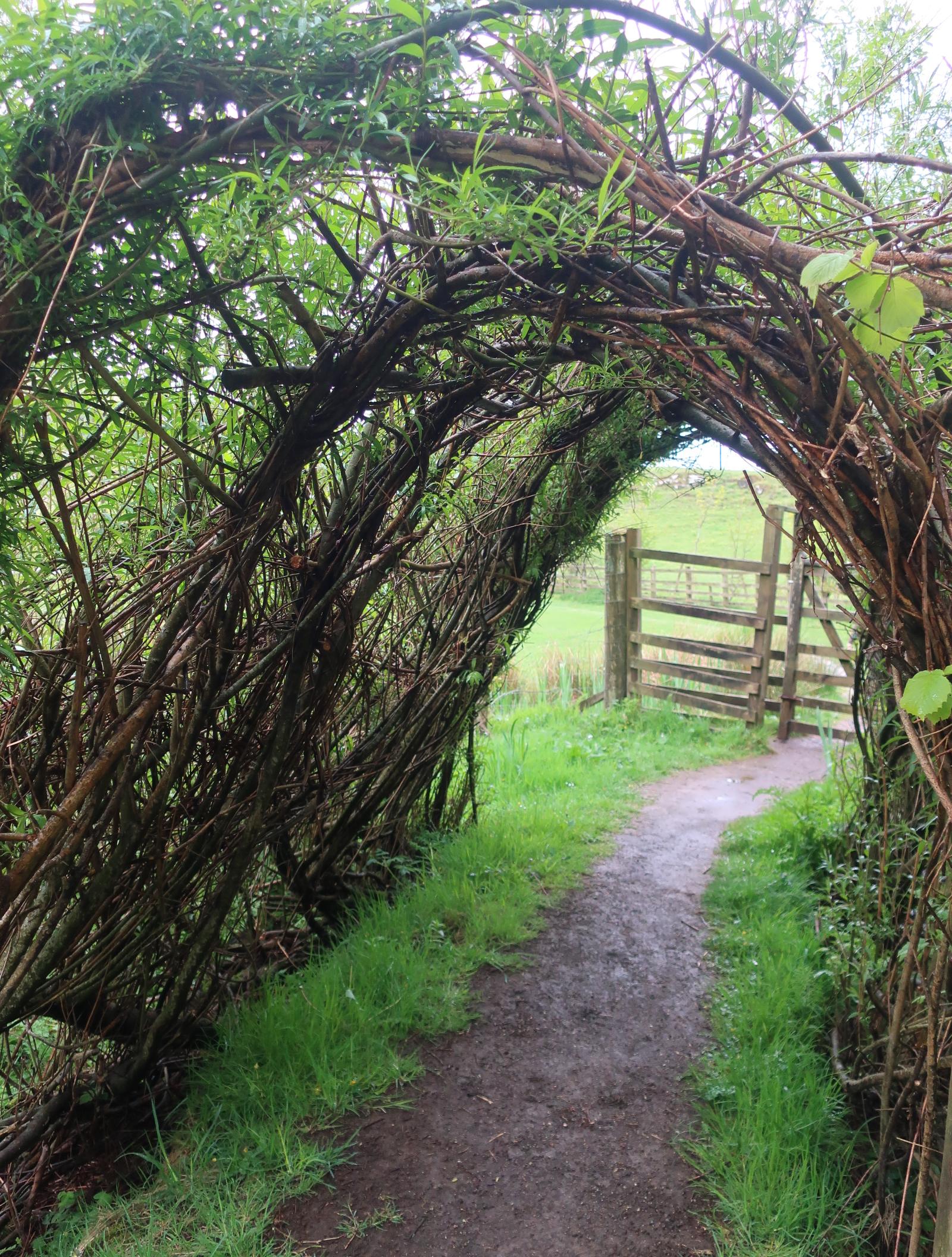 Art Walk Wicker Arch