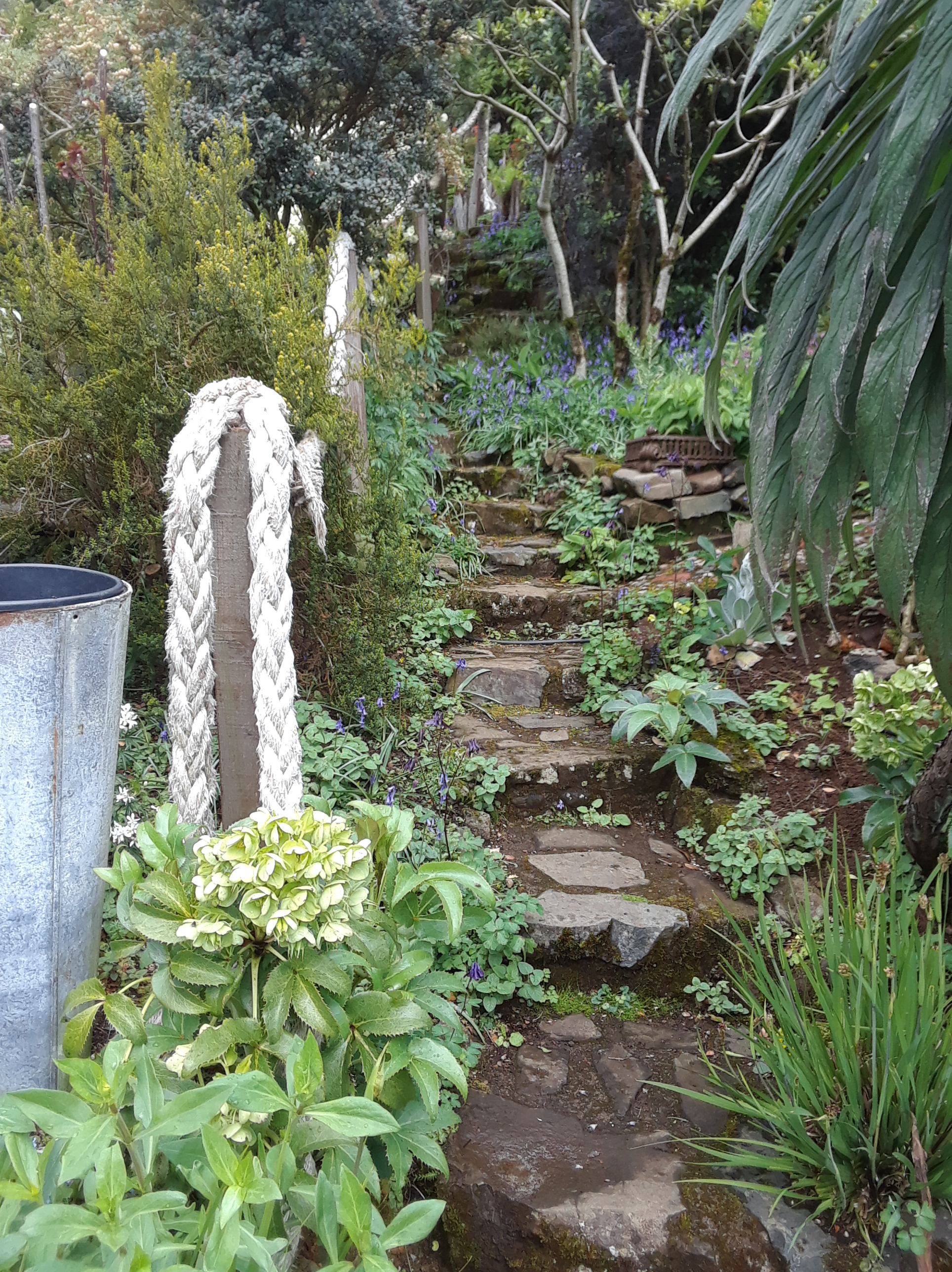 Lip Na Cloiche Garden