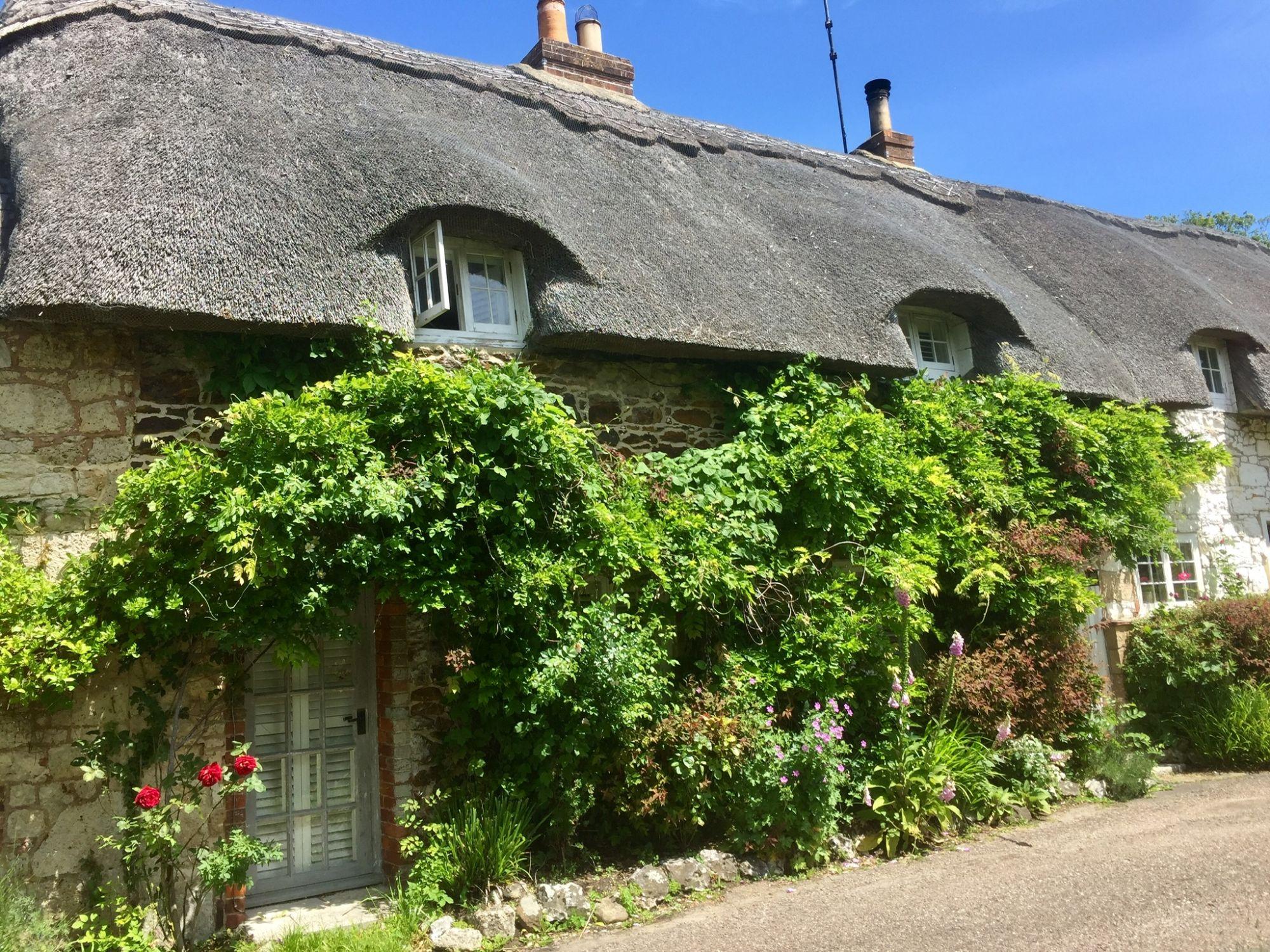 Winkle St Isle of Wight