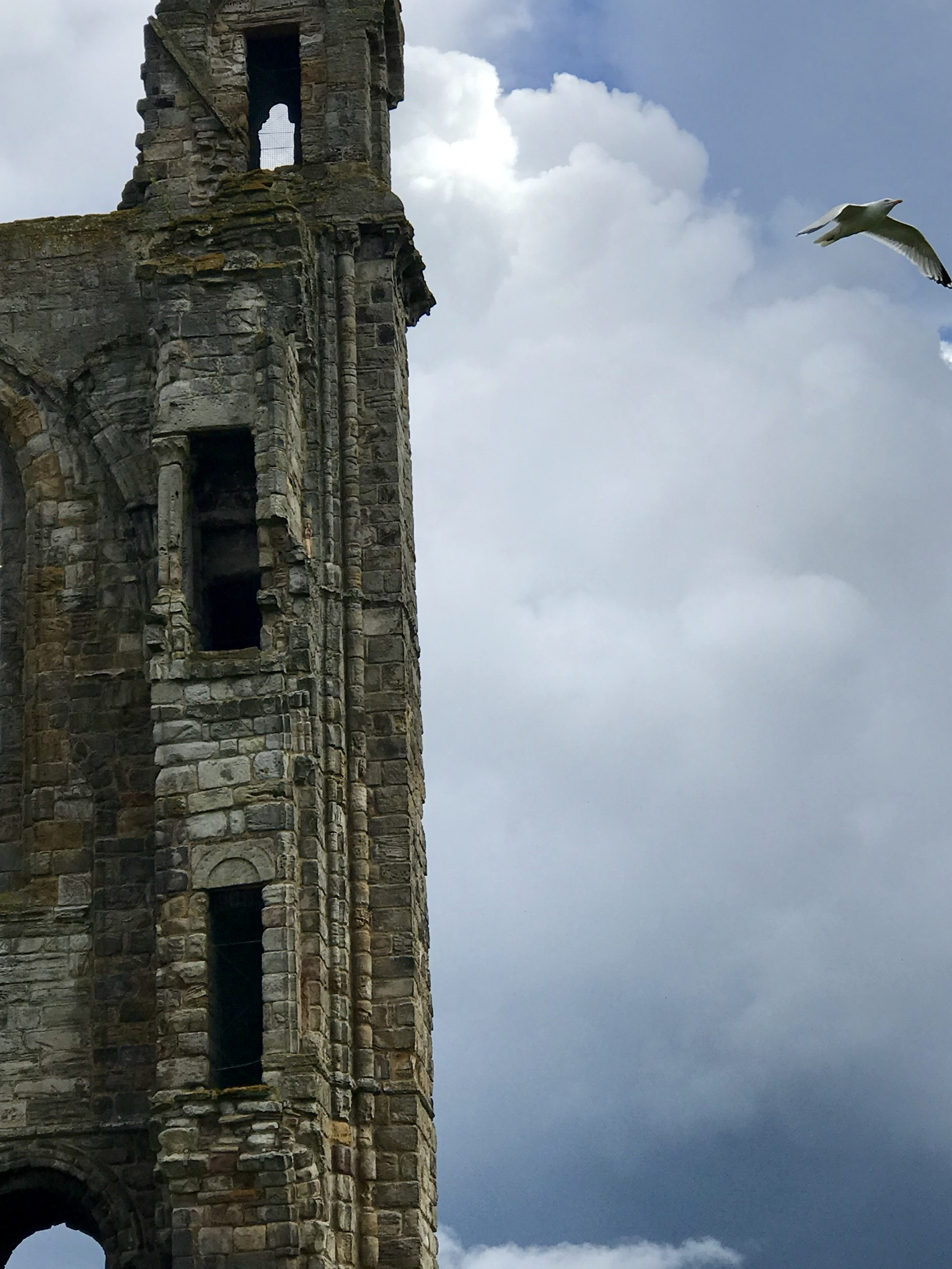 Cathedral Soar