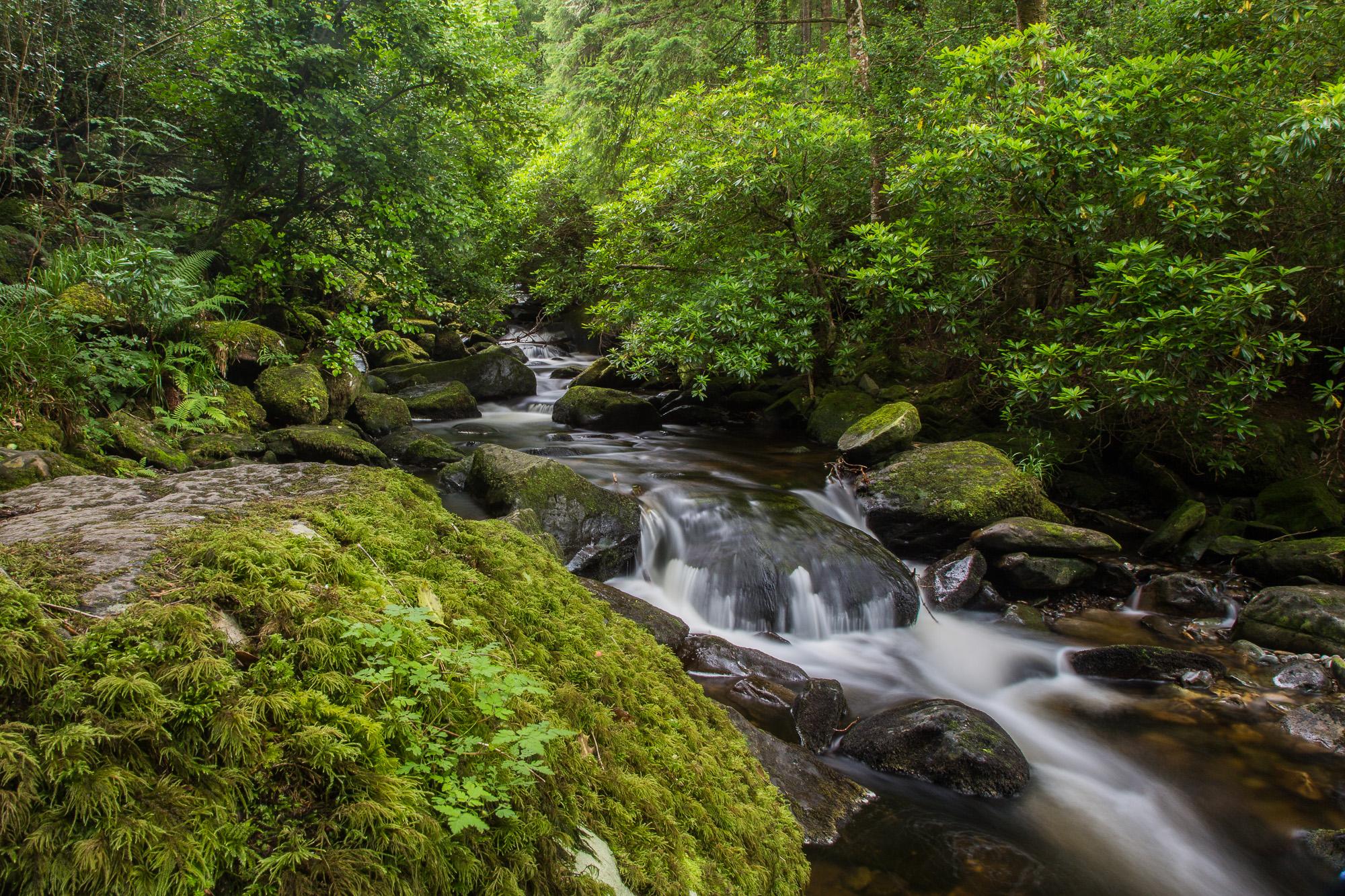 Torc Waterfall, Killarney n.p.